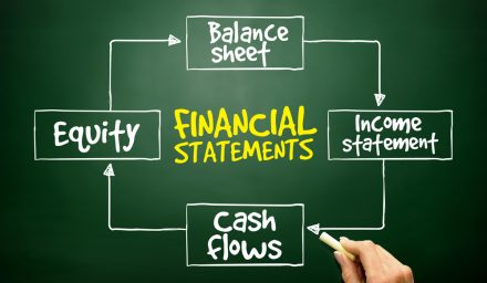 Financial statements of a company